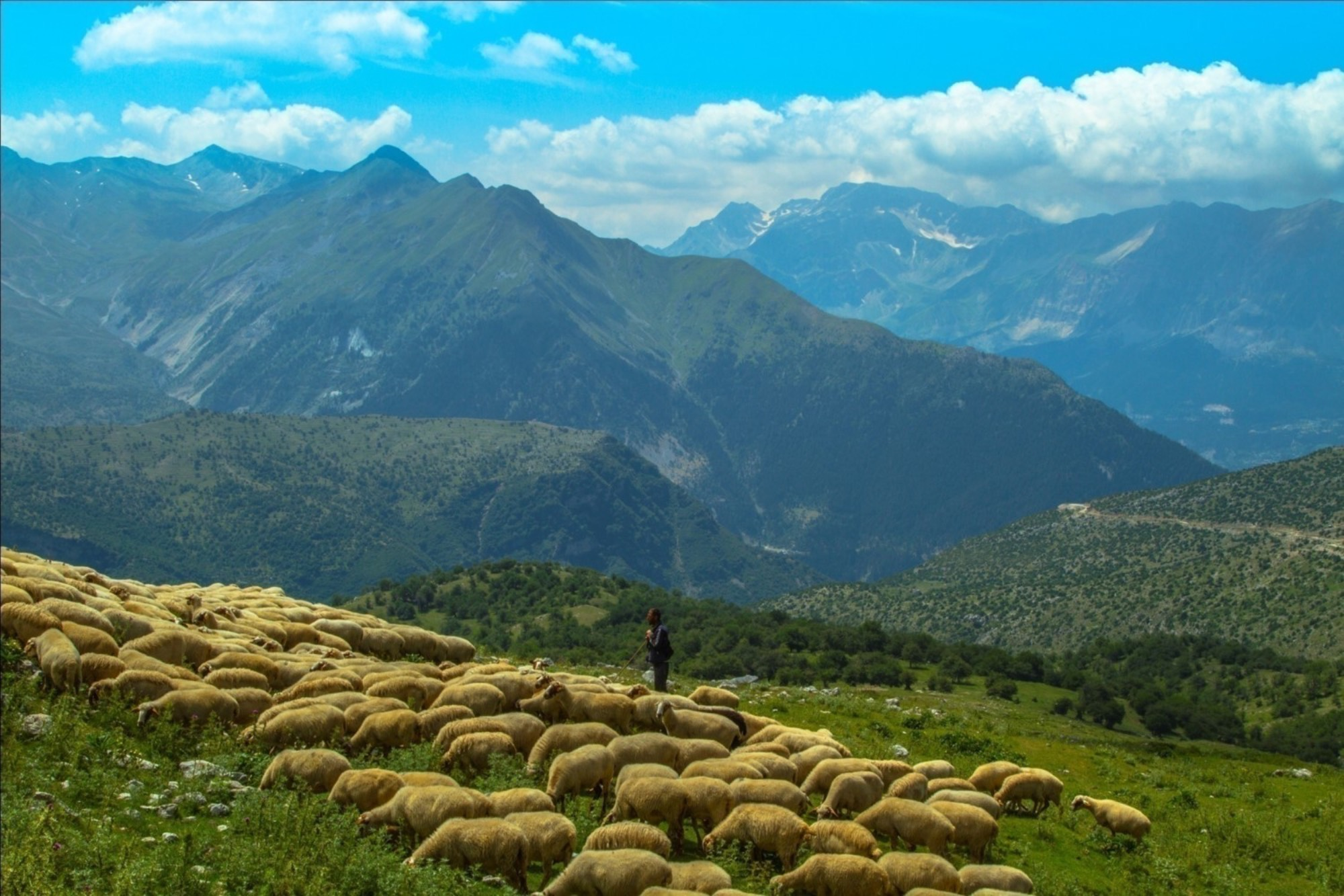 Μεσαιωνικές μορφές Οικονομίας και Παραγωγής στον ορεινό χώρο, και διδάγματα για το μέλλον