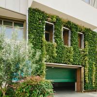 Κάθετος κήπος στη Θεσσαλονίκη