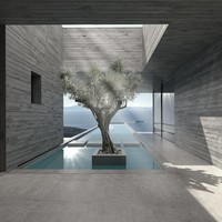 Lap Pool House